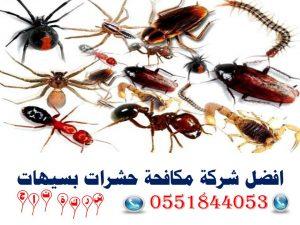 افضل شركة مكافحة حشرات بسيهات
