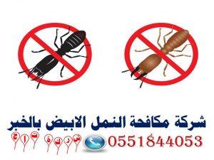 شركة مكافحة النمل الابيض بالخبر0551844053 شركة تاج
