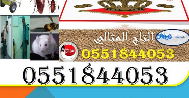 شركة مكافحة حشرات بالجبيل 0551844053
