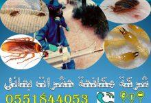 شركة مكافحة حشرات بحائل 0551844053 تاج