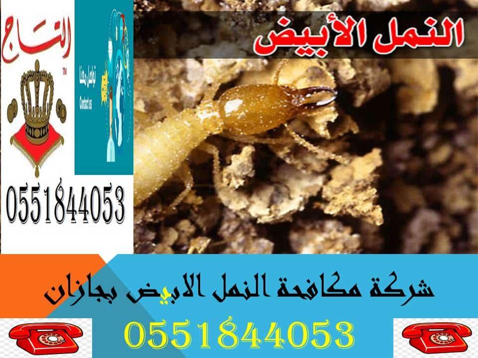 افضل شركة لمكافحة النمل الابيض بجازان