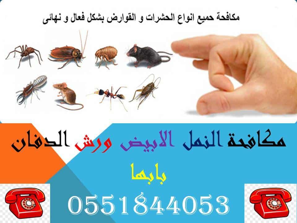 مكافحة النمل الابيض ورش الدفان بابها